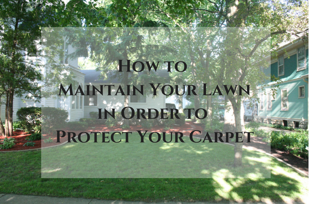 How To Maintain Your Lawn In Order Protect Carpet