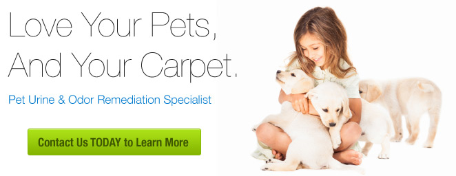 Aqualux Pet Odor Specialist